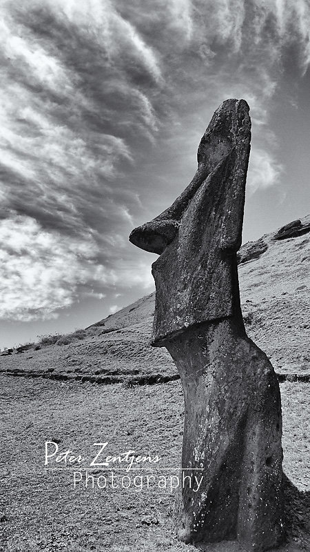 The thinker of Rano Raraku